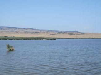 Озеро Кумиси, Кумиси