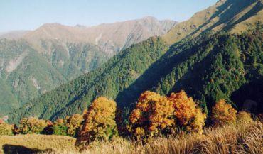Saguramsky national park, Tbilisi