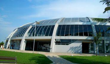 Batumi Dolphinarium, Batumi