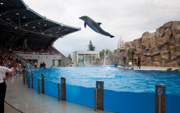 Батумский дельфинарий, Батуми