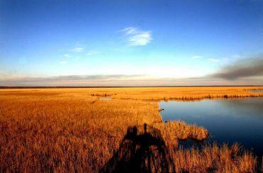 Kolkheti National Park, Poti