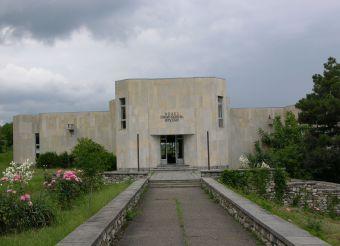 Ivane Beritashvili House Museum, Vejini
