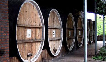 Wine Сellar, Sighnaghi