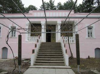 Lesya Ukrainka House-Museum, Surami