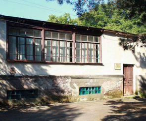 Дом-музей Дмитрия Кипиани, Квишхети