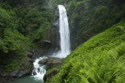 Экологический туризм в Грузии: отправляемся в Кахетию