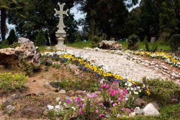 Batumi Botanical Garden