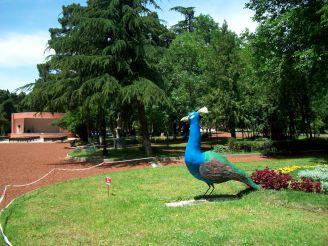 Mushthaid Garden
