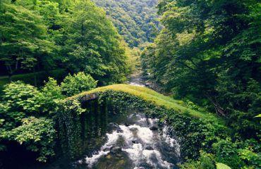Национальный парк Кинтриши