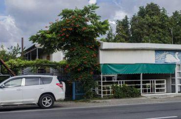 Tetri Gedi Guesthouse